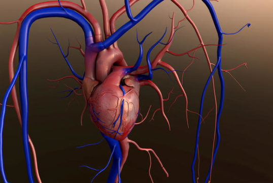 Risk of Aortic Stenosis